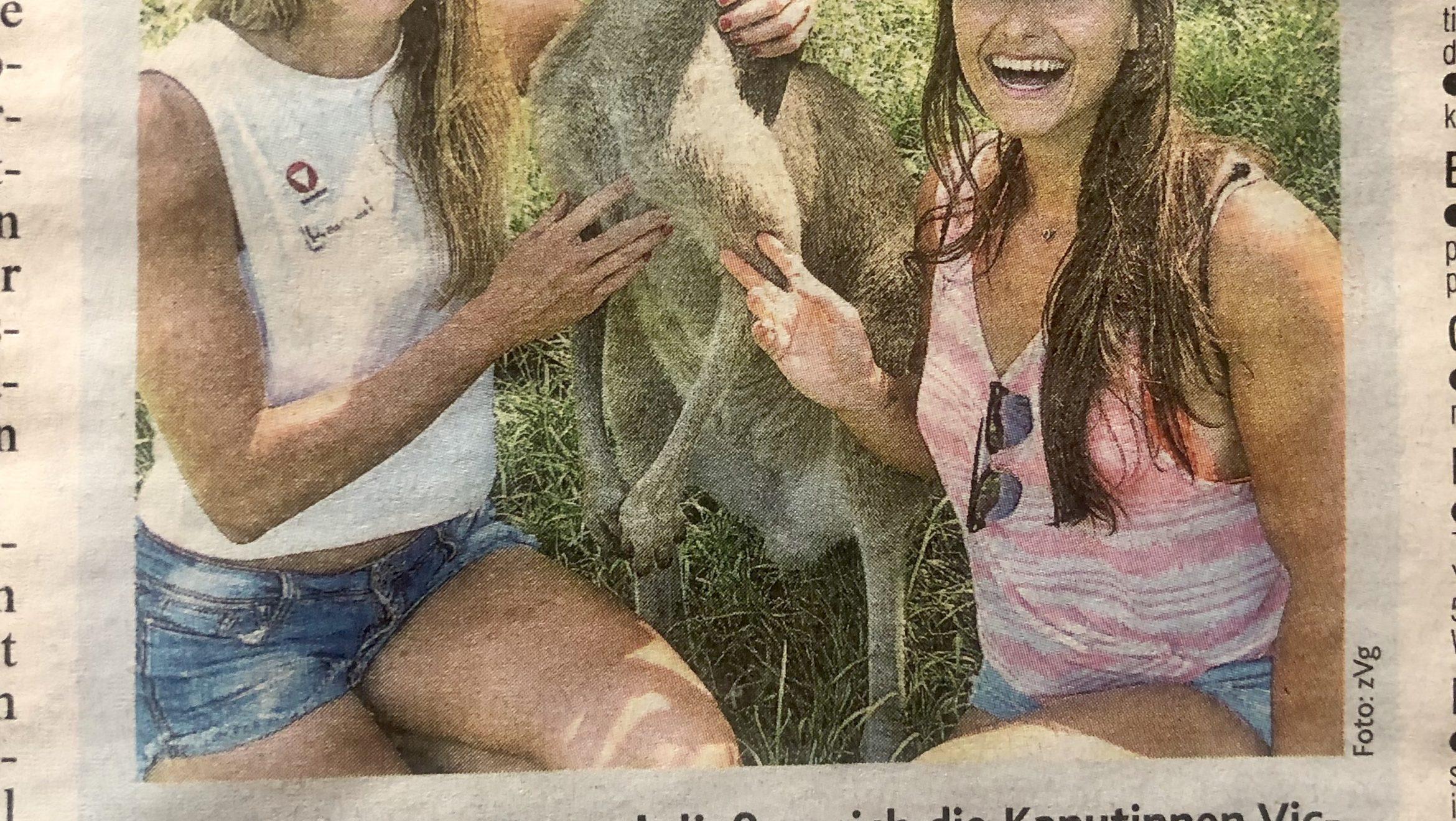 Krone: Känguru Besuch